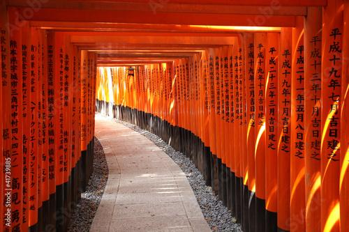 Japan - Fushimi Inari torii gates
