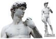 canvas print picture - Florence - David de Michel-Ange