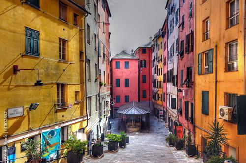 Garden Poster Liguria truogoli di santa brigida, genova (hdr)