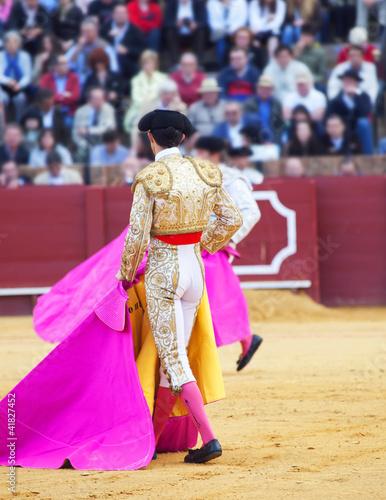 Wallpaper Mural Torero  in the bullfighting arena in Spain