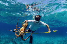 Spearfishing For Lobster