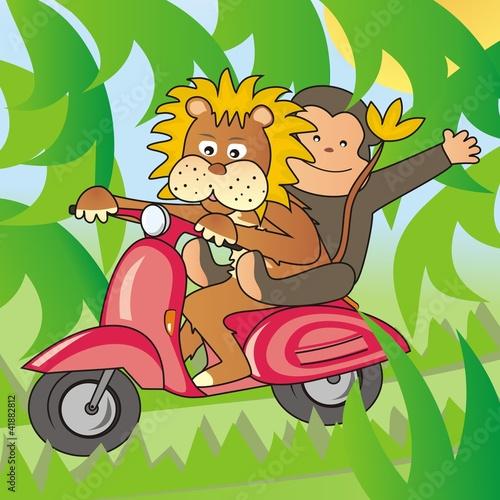 Poster de jardin Zoo lion and a monkey on a bike