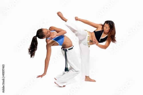 Garden Poster Martial arts Capoeira