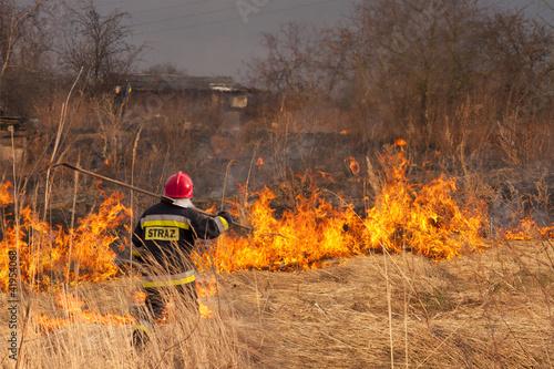 Valokuva  Wypalanie traw. Pożar.