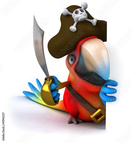 Fotografia Perroquet pirate