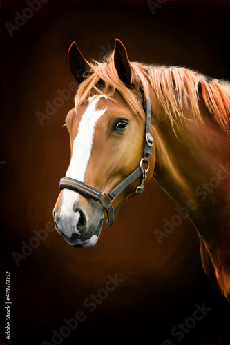 portret-malarski-konia