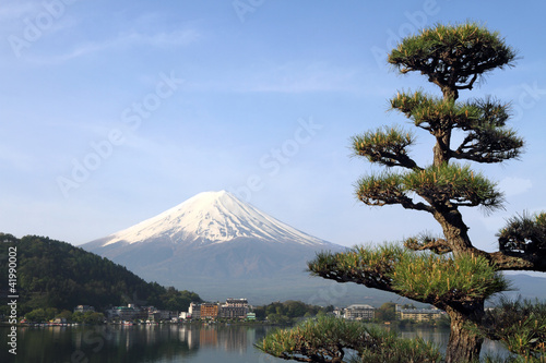 Fotografie, Obraz  Mt Fuji, Japan
