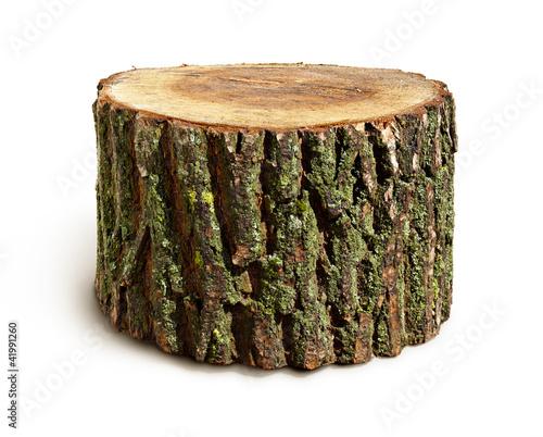 Canvastavla Stump isolated