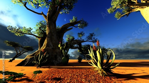 Foto op Canvas Baobab African savannah