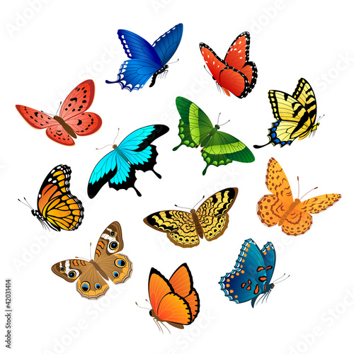 Poster Vlinders Flying butterflies