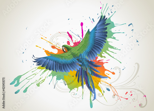 kolorowa-papuga-grafika-wektorowa