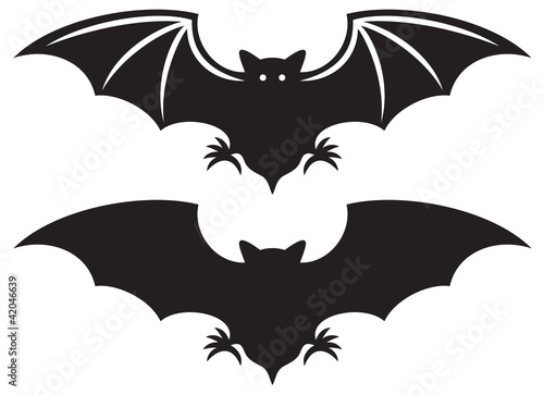 Canvas Print silhouette of bat