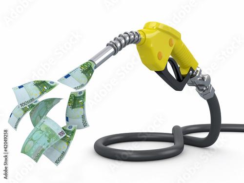 Fotografie, Obraz  Gas pump nozzle and euro on white background