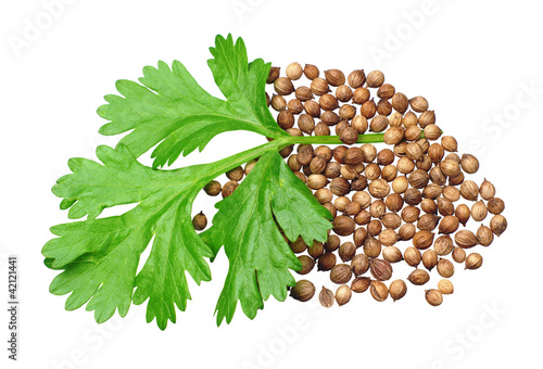 Green coriander and grains