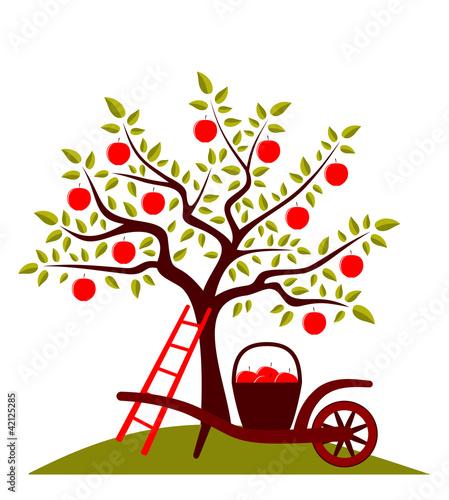 Foto op Canvas Vogels in kooien apple harvest