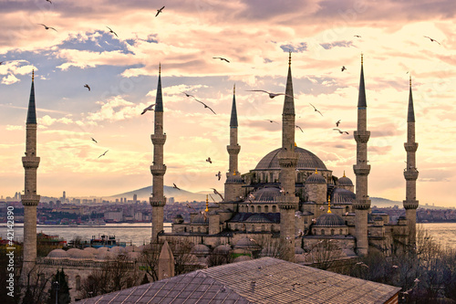 Stampa su Tela  The Blue Mosque, Istanbul, Turkey.
