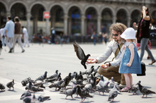 Adorable Little Girl And Her Father Feeding Pigeons
