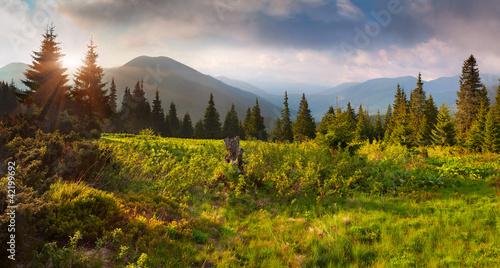 Fototapeta krajobraz piekny-letni-krajobraz-w-gorach