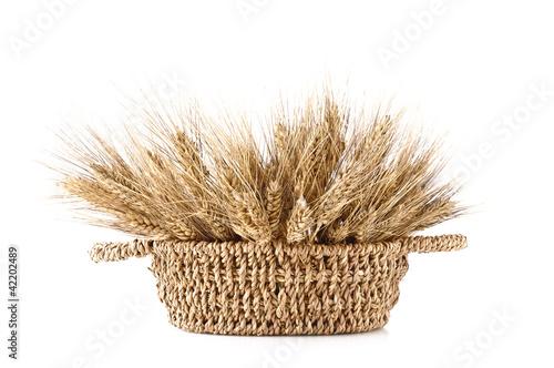 Valokuva  cestino di spighe di grano