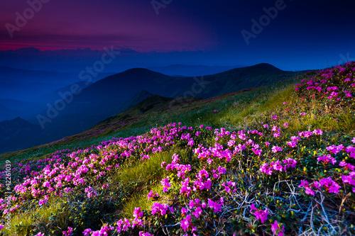 Fototapety, obrazy: mountain landscape
