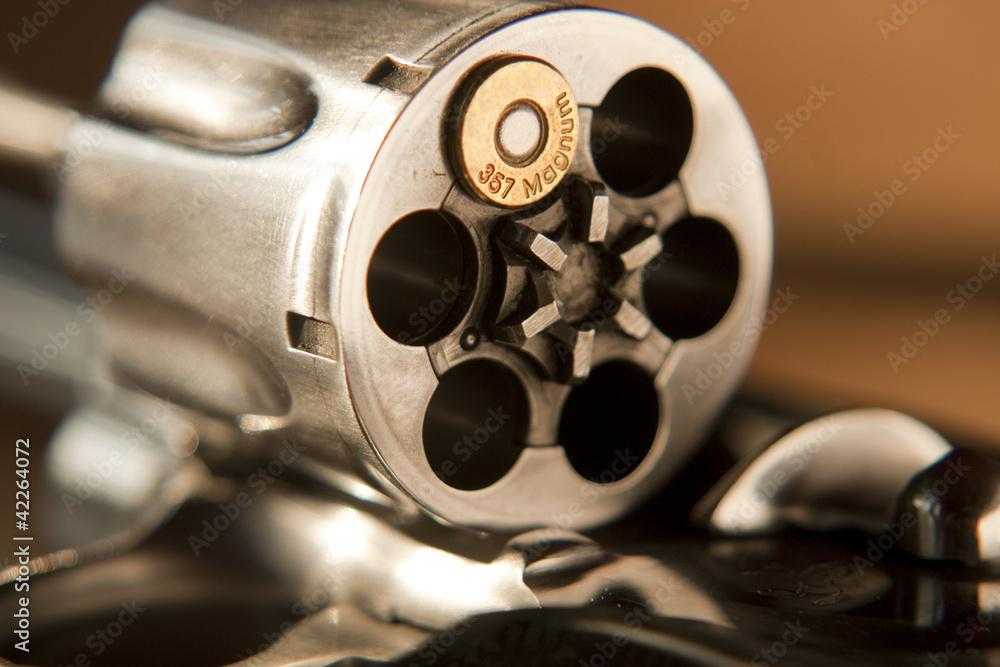 Fototapeta 357 Magnum Revolver