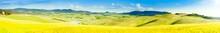 Tuscany Countryside Panoramic Photo