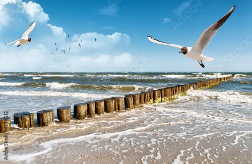 Foto auf AluDibond Nordsee Ostsee