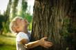 Leinwanddruck Bild - Little girl hugging a tree, looking up