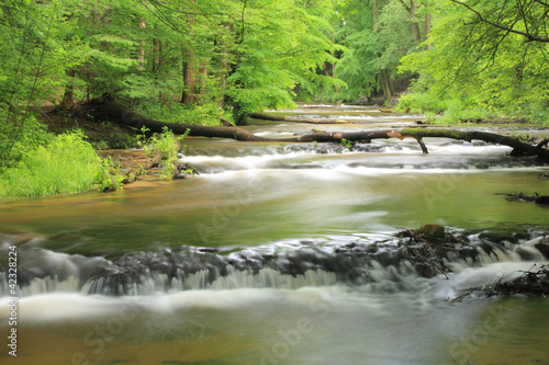 reserve-nad-tanwia-tanew-river-roztocze