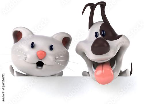 Fotografía  Cat and dog