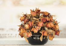 Dry Rose Flower Vase