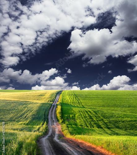 Poster Onweer meadow