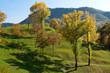 paesaggio di montagna 119