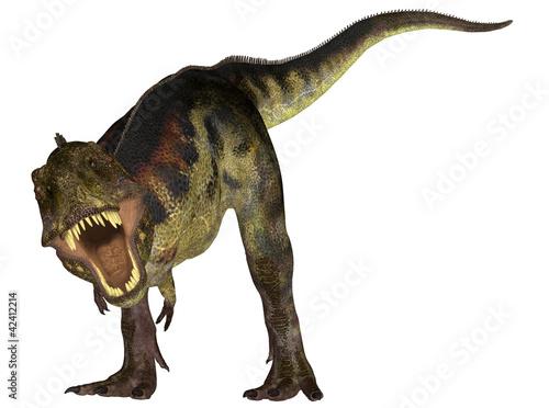 Photo  Tyrannosaurus