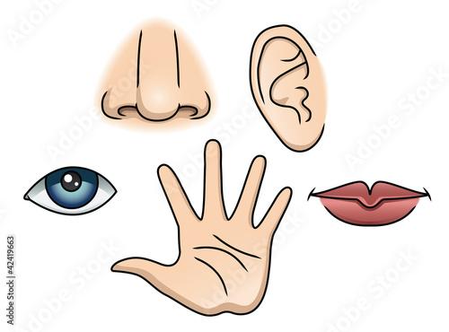Photo 5 Senses