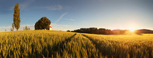 Sunset Over Wheat Field With Path And Chapel In Slovakia