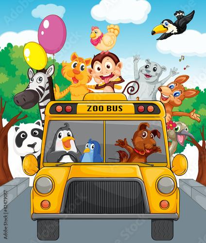 Bus of animals
