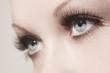 Leinwandbild Motiv beautiful woman eyes