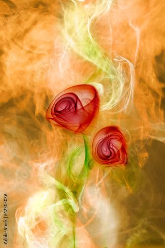 dym-kwiat-na-tle-ognia