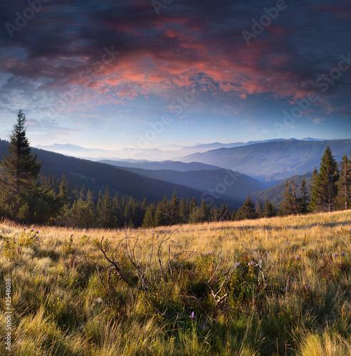 Kolekcje specjalne naklejek letni-krajobraz-w-gorach-wschod-slonca