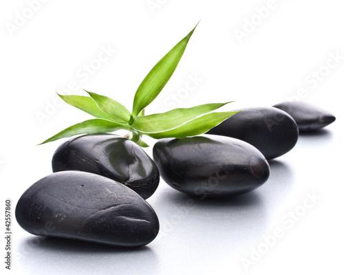 kamyki-zen-kamienna-spa-i-koncepcja-opieki-zdrowotnej