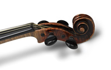 Head Of Classical Violin On Wh...