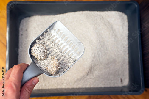 Photographie  cleaning cat litter box