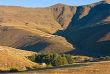 Shephard Hut In Sun Valley