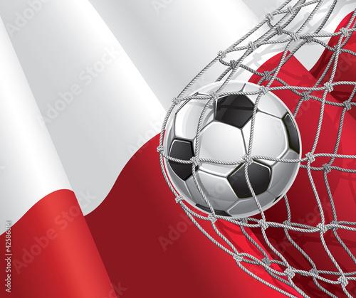 pilka-nozna-polska-flaga-z-pilka-nozna-w-siatce