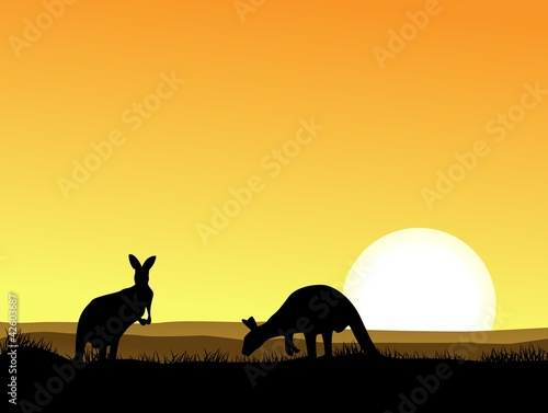 Garden Poster Brown Kangaroo with sunset background