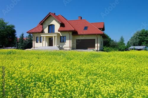 Foto  Ein Haus in einer blühenden Vergewaltigung