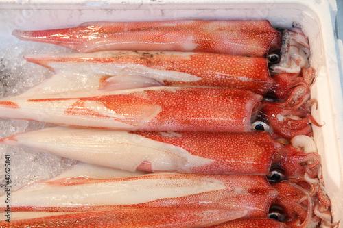 Fotografie, Obraz  Tokyo seafood market - squids at Tsukiji