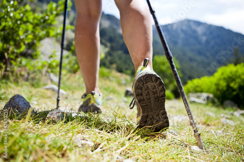 Fotografie, Obraz  Nordic walking legs in mountains