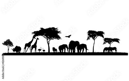 safari animal wild animals in Africa